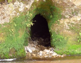 50-cave