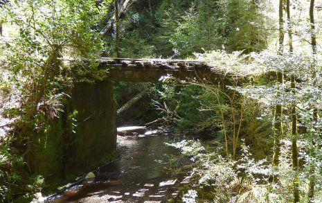 Historic Bridge along walkway